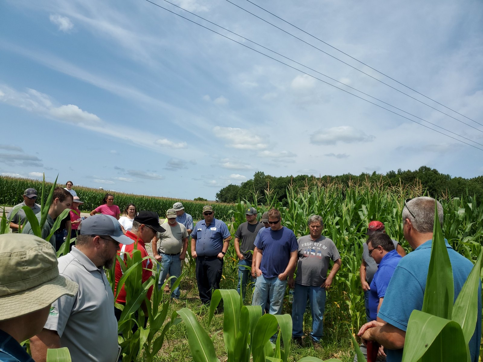 Group discussion on the benefits of interseeding cover crops